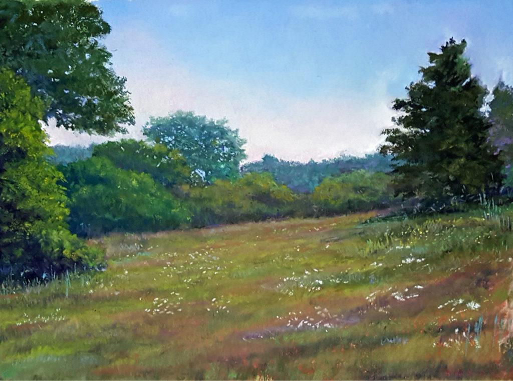 queen-anns-meadow